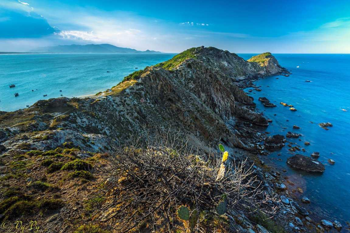 eo gio(FILEminimizer)