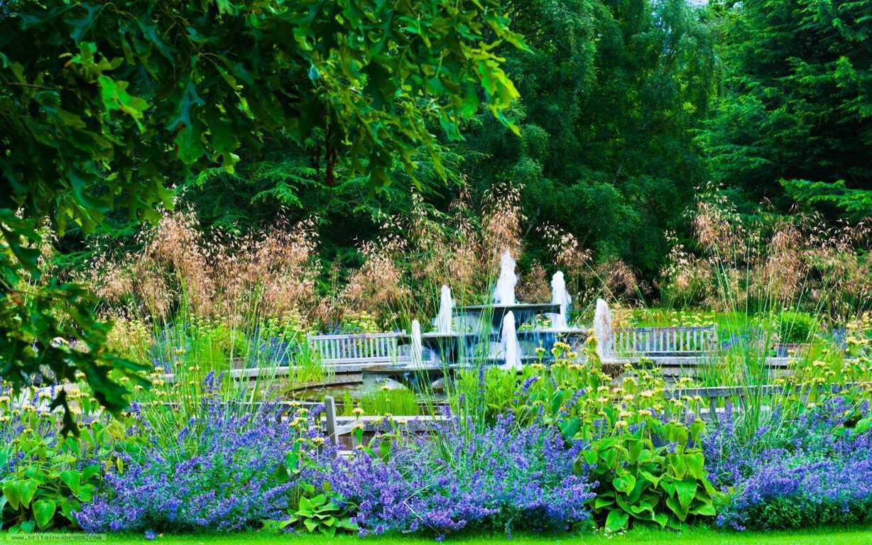 Cambridge University Botanic garden(FILEminimizer)