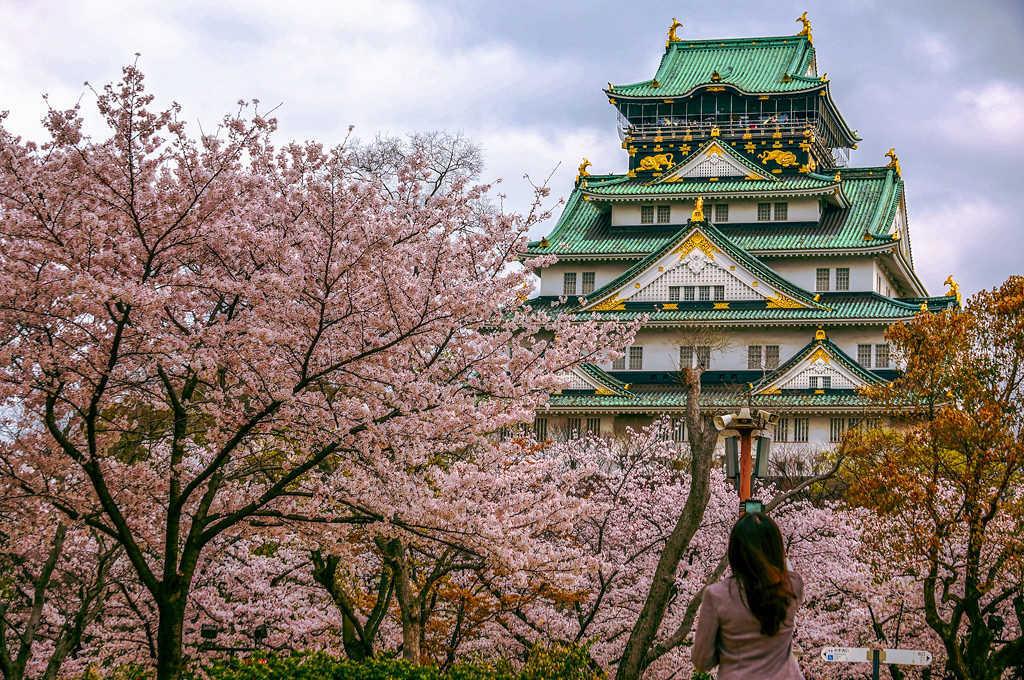 tour-nhat-ban-ngam-hoa-anh-dao-osaka-castle
