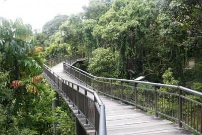 The-Southern-Ridges---Singapore.JPG