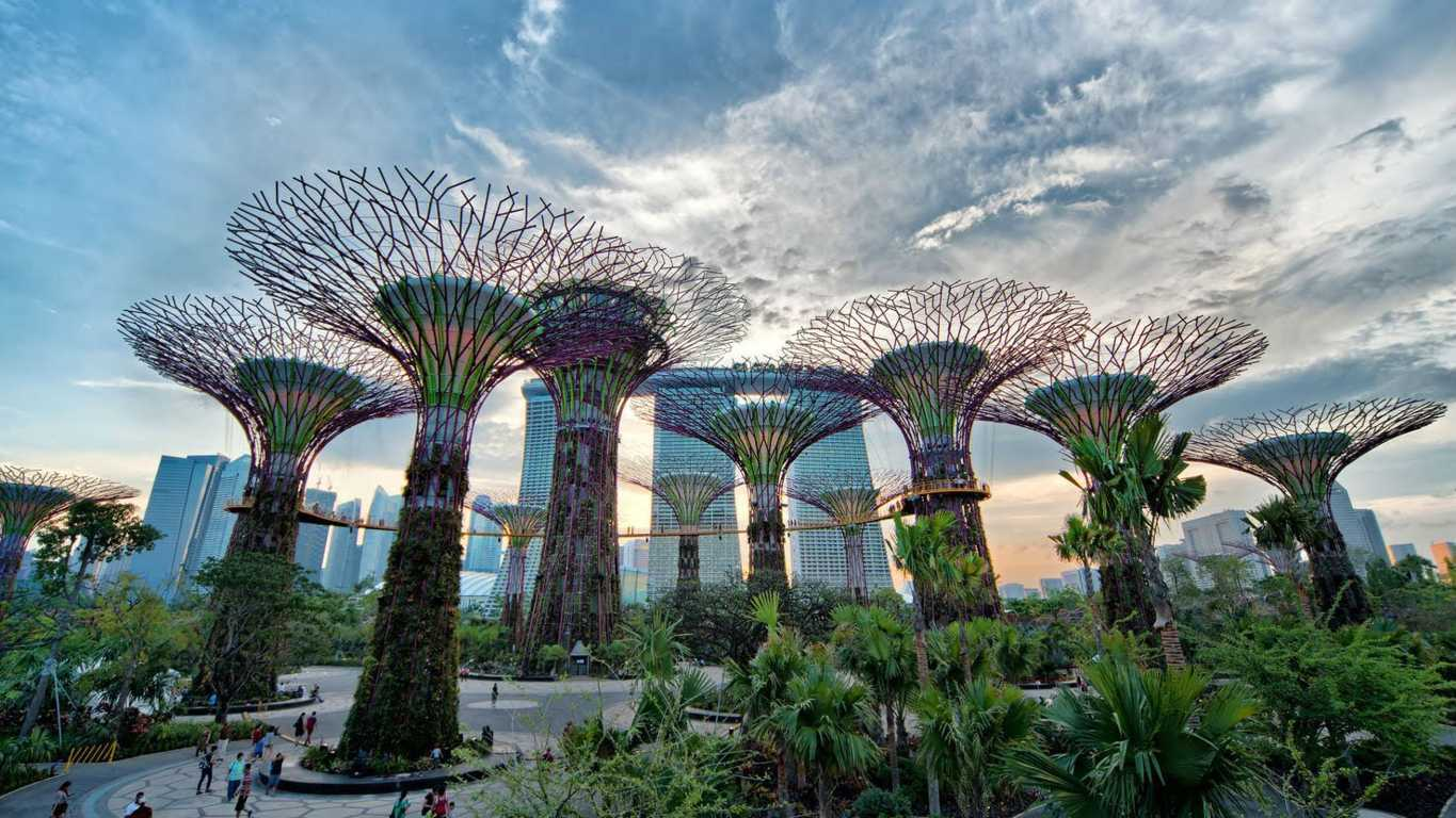 garden by the bay(FILEminimizer)