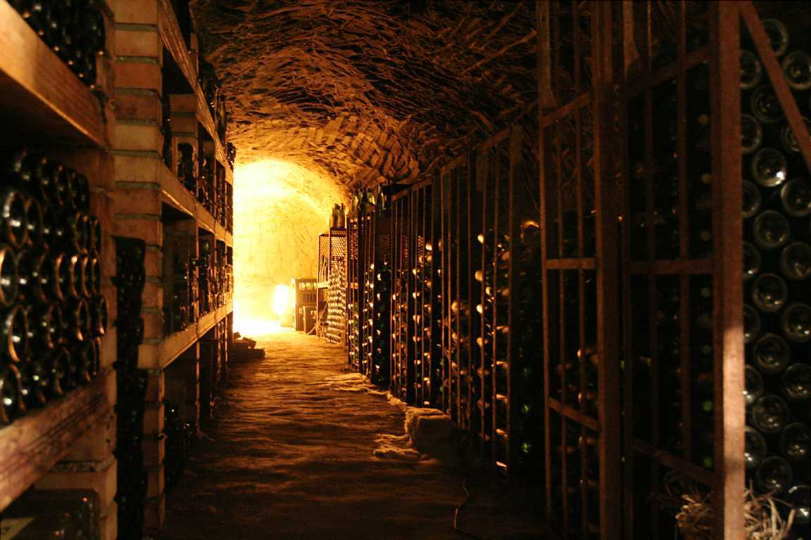 WINE CELLAR(FILEminimizer)