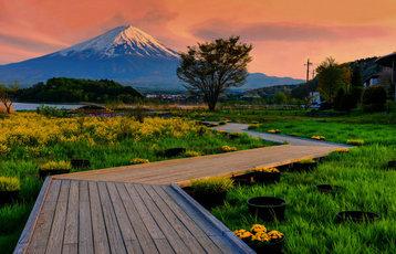 oishi-garden-park-with-mt-fuji-358x230